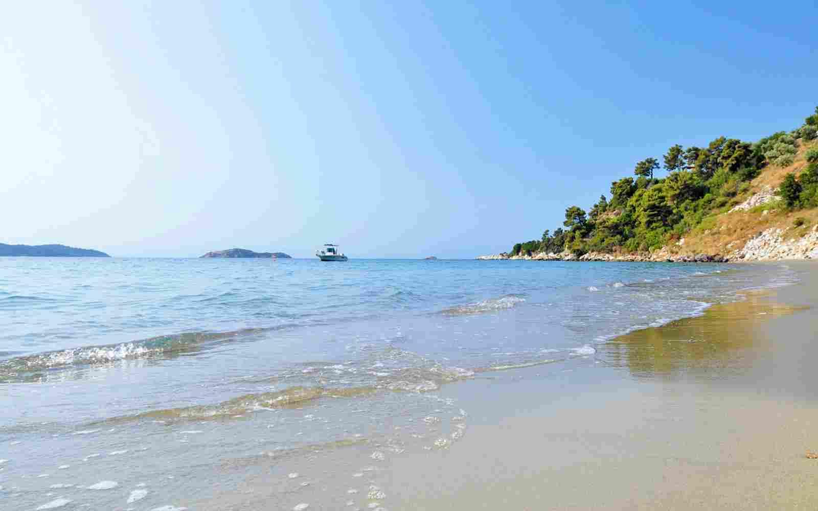 https://mohuamotels.co.nz/wp-content/uploads/2016/03/summer-beach-01.jpg